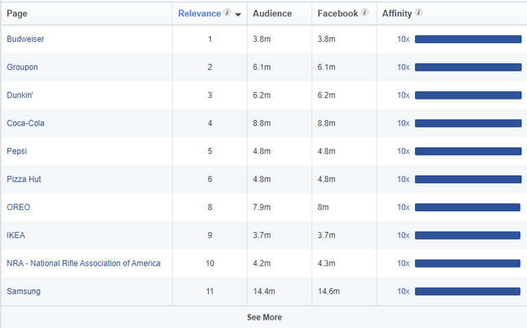 Top Categories and Page Likes - facebook audience insights